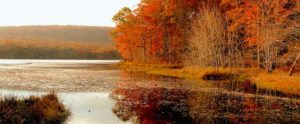 A large lake skirted by red and orange trees.