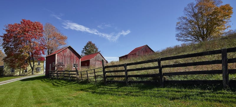 A grassy lawn and pasture separated by a wood fence, with three red wooden sheds in the background.