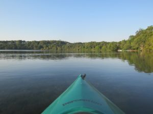 Looking out from a kayak on a tranquil lake on a summer's morning