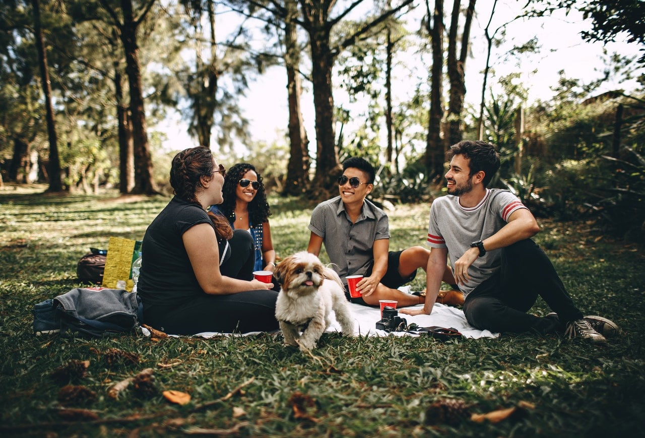 Group of friends having a picnic at the park.